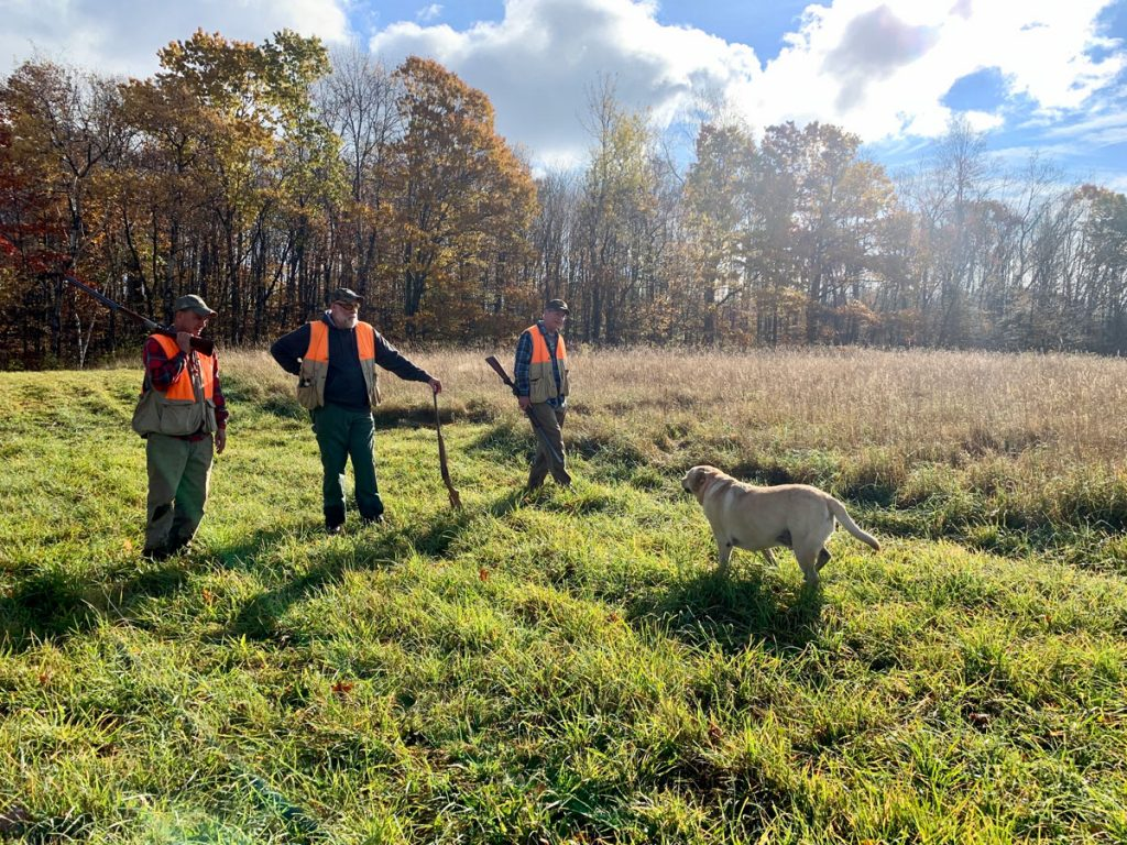 Pheasant Hunting upstate NY